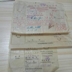 民国1947年卫生署厦门海港检疫证明3张:鼠疫.伤寒.天花