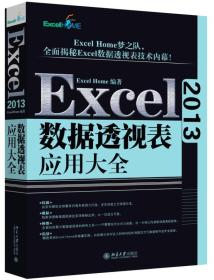 Excel 2013数据透视表应用大全