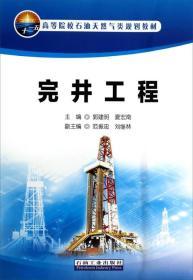 完井工程/高等院校石油天然氣類規劃教材
