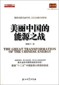 读点石油财经丛书:美丽中国的能源之战