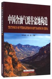中国含油气裂谷盆地构造