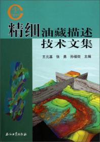 精细油藏描述技术文集 王元基,张 勇,孙福街 主编