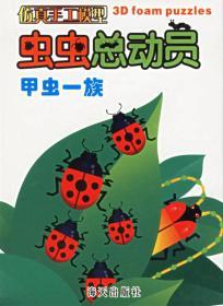 甲虫一族(虫虫总动员:仿真手工模型)