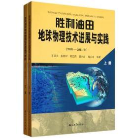 胜利油田地球物理技术进展与实践(2005-2011年)