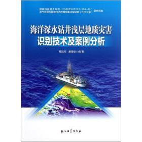 海洋深水钻井浅层地质灾害识别技术及案例分析