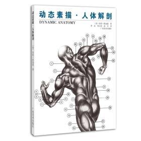 【二手包邮】动态素描.人体解剖 (美)伯恩·霍加思 广西美术出版