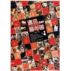 遇见 猫的国 附赠精美卡片 丁三郎 中国友谊出版公司 9787505727281