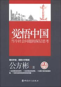 觉悟中国:当今社会问题的深层思考