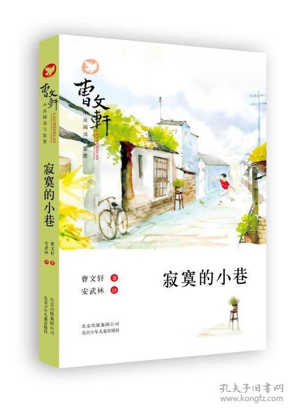 曹文轩小说阅读与鉴赏:寂寞的小巷