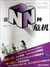 第N种危机:2009财经小说拓风之作