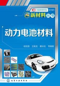 新材料丛书:动力电池材料