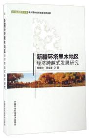 新疆环塔里木地区经济跨越式发展研究