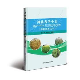 河北省冬小麦高产节水节肥栽培技术