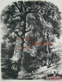 """1874年1版蚀""""真正的蚀刻铜版画""""《老河道》——""""John Mallows Youngman"""" 作品 版内签名 34.5x25cm"""