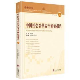 中国社会公共安全研究报告(第10辑)