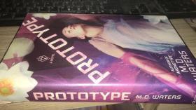 Prototype: A Novel (Archetype series)英文原版