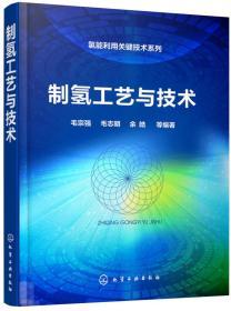 氢能利用关键技术系列--制氢工艺与技术