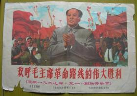 文化大革命——电影纪录片《欢呼毛主席革命路线的伟大胜利》宣传画——中央新闻纪录电影制片厂摄制