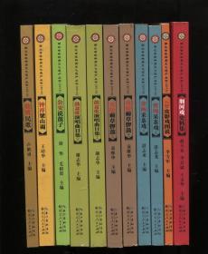 湖北省非物质文化遗产丛书2013(全11册)
