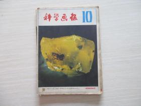 科学画报1982年第10期【408】