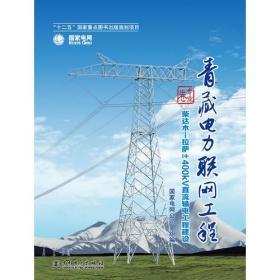 青藏电力联网工程 综合卷 柴达木—拉萨±400kV直流输电工程 专著 国家电网