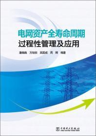电网资产全寿命周期过程性管理及应用