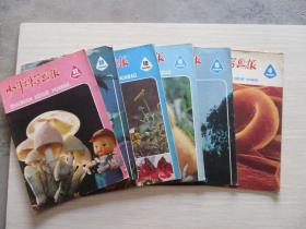 少年科学画报1980年第4、8、9、10、11、12期  6本合售【408】