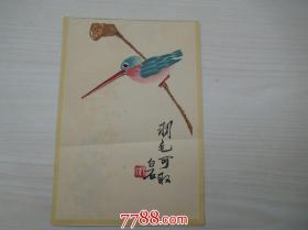 羽毛可取(白石信笺,16开详见书影,共计5张)