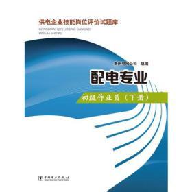 初级作业员-配电专业-供电企业技能岗位评价试题库-(下册