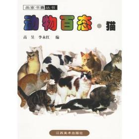 动物百态·猫