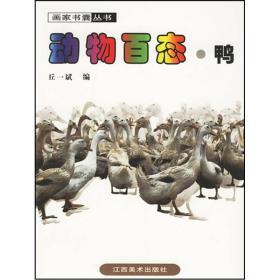 动物百态·鸭