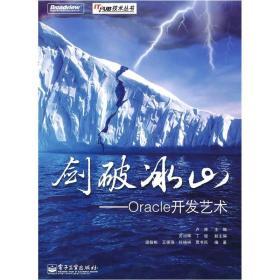剑破冰山:Oracle开发艺术
