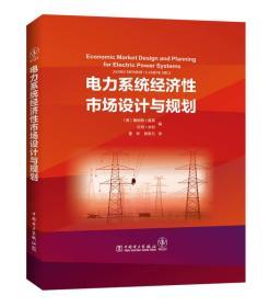 现货-电力系统经济性市场设计与规划