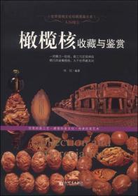 人间瑰宝:橄榄核收藏与鉴赏