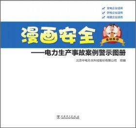 漫画安全:电力生产事故案例警示图册