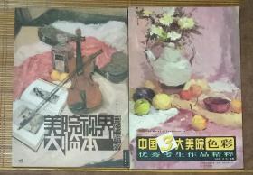 美院视界大临本:色彩静物,中国3大美院色彩优秀考生作品精粹,
