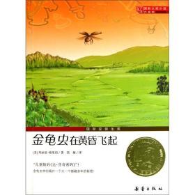 国际大奖小说(升级版):金龟虫在黄昏飞起