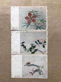 五十年代新加坡彩色明信片:花卉动物画3张一组(绘画版),M028
