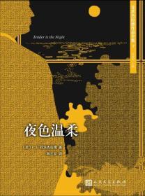 正版新书菲茨杰拉德作品全集7:夜色温柔(长篇小说)