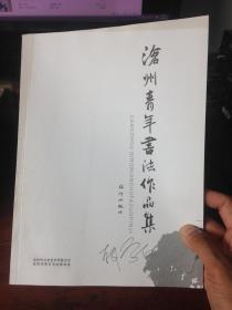 沧州青年书法作品集