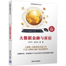 大数据金融与征信/互联网金融系列丛书