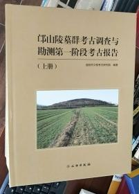 (正版包邮)邙山陵墓群考古调查与勘测第一阶段考古报告(上下册)
