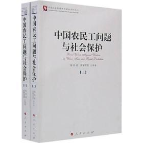 中国农民工问题与社会保护(上下)