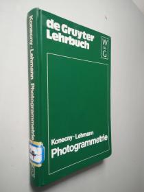 de Gruyter Lehrbuch    德文原版