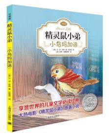 精灵鼠小弟:小鸟玛加洛(注音版)