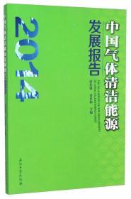 中国气体清洁能源发展报告(2014)