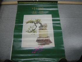 挂历专场:1988年--精美挂历《中国盆景》