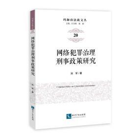 网络犯罪治理刑事政策研究