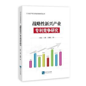 战略性新兴产业专利竞争研究