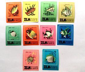 火花贴标:热带鱼(10枚)遵义蜡梗火柴